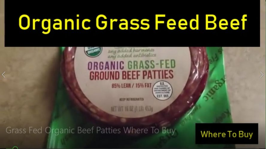 Organic Beef Cover